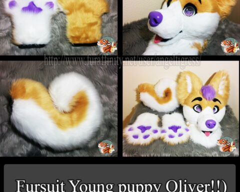 Fursuit Young puppy Oliver