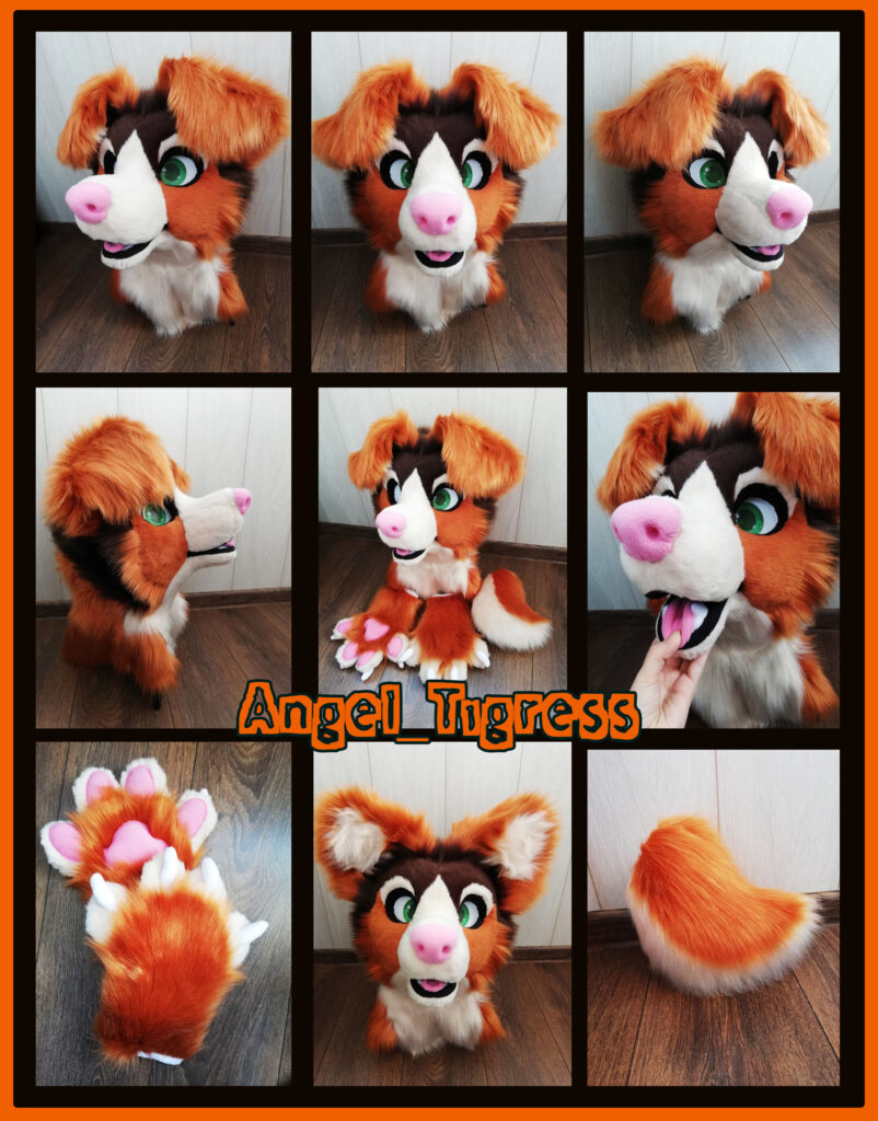 Australian Shepherd NEW Fursuit
